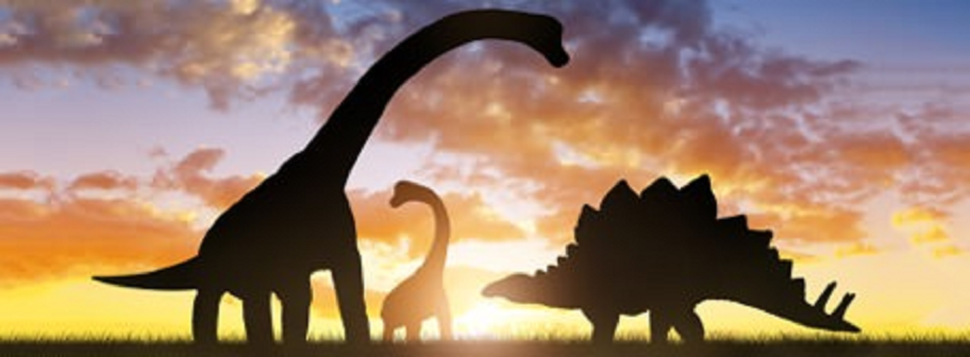 Dinosaur facts and fictions